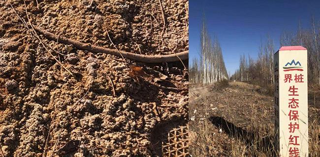 腾格里沙漠污染:追责、赔偿、环境修复 一个都不能少